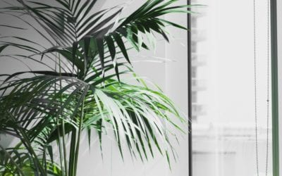 Reoccurring Spring Facilities Management Maintenance Tasks